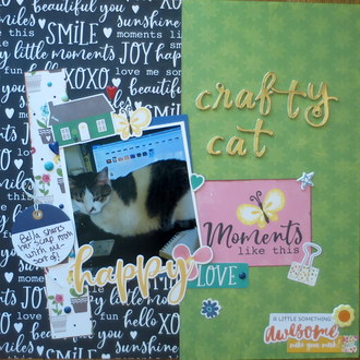 Crafty Cat