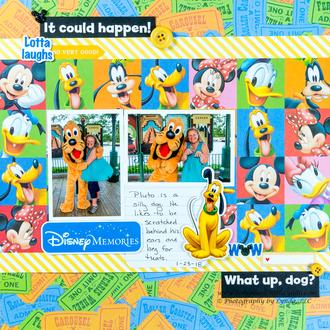 Disney Memory with Pluto