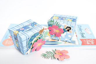 Dive Into Summer Treat Boxes