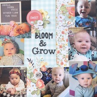 Bloom & Grow/ MMC June15 #3