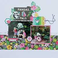 Pandas & Pals