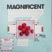 Magnificant Seven