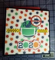 2020 Covid-19 Mini Album