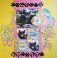 The Cat's Meow by Monique Nicole Fox
