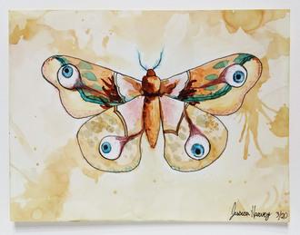 Eyes of a Moth