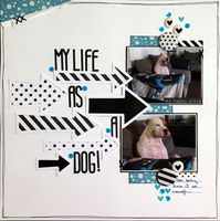 My Life As A Dog (Sept 2020 Movie of the Decade Challenge)