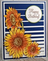 Happy Birthday - Sunflowers