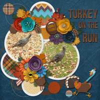 Turkey on the Run