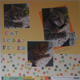 Cat Scrap Fever