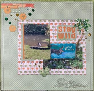 Stay Wild- Florida
