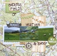 Endless Fields/ Nov 1-3-5-7