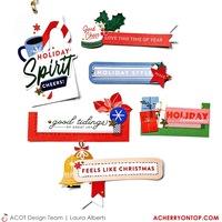 Holiday DIY Embellishments