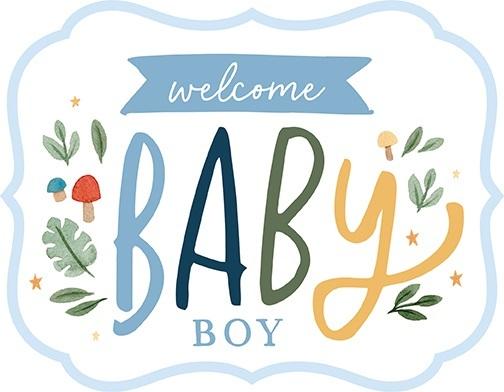 Welcome Baby Boy Echo Park