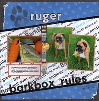 Ruger's 1st BarkBox