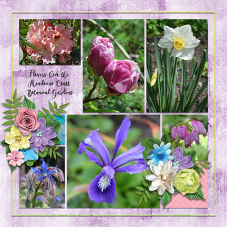 March flowers