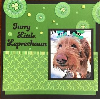 Furry Little Leprechaun