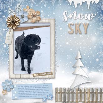 Snow Sky