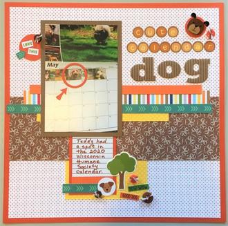 Calendar Dog