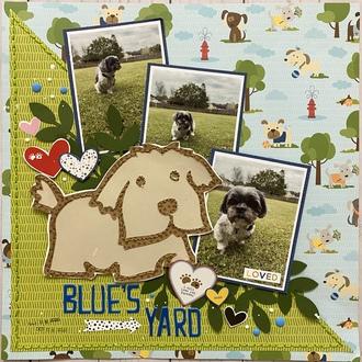 Blue's Yard