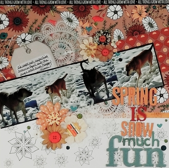 Spring is snow much fun