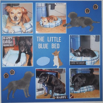 The Little Blue Bed