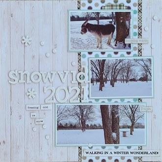 Snowvid 2021