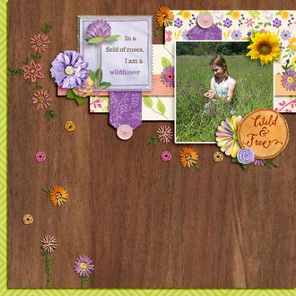 my wildflower