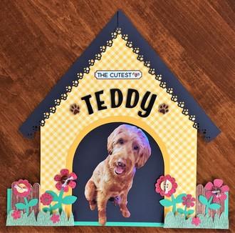 Doghouse Teddy
