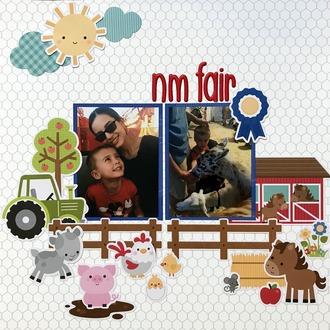 NM Fair