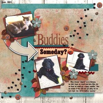 Buddies Someday