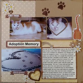 Adoption Memory
