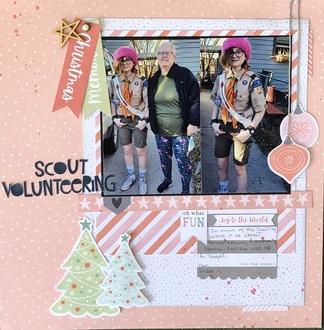 Scout Volunteering/ Becky Fleck 230
