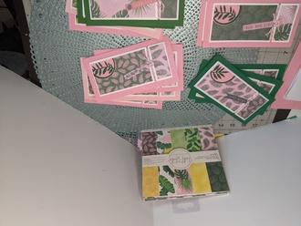 Mini Tropical Slimline cards