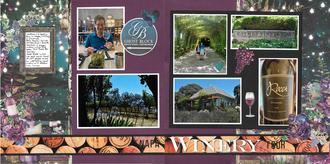 Napa Winery Tour