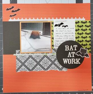Bat at work