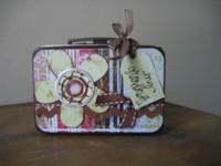 Altered mini lunchbox