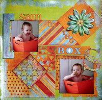 Sam in the Box