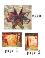 Christmas Star Book