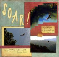 Soar ***CT Fall Reveal***