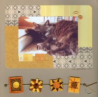 Cat Nap ** Setp Photo Challenge Layout