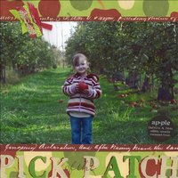Pick of the Patch *Cantata Books Fast & Easy Scrapbook Pages*