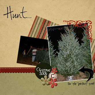 """Hunt for the """"Perfect"""" Tree"""