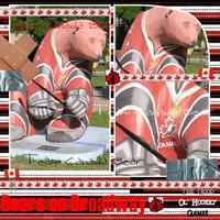 Team Canada Bear