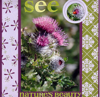 See Nature's Beauty (Stamping, Stationery & Scrapbooking 2nd Quarter 2007)