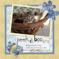 peek-a-boo kitty