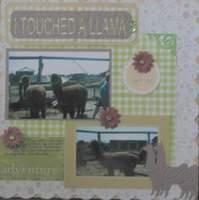 I Touched A Llama