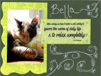 Bella....and a Little Doodling