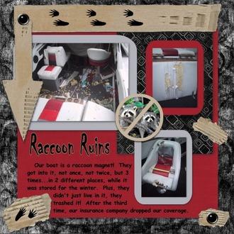 Raccoon Ruins