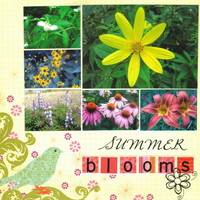 Summer Blooms  (Last Blooms of Summer Challenge)