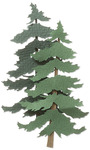 Pine Trees  3-D Stickers - Jolee's By You